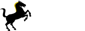 Belator Books logo white letters.fw