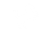 white-logo-belator-books-dec-2016-fw